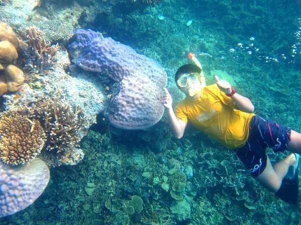 Asyiknya menyelam di Pulau Pari (Ozzy/dTraveler)
