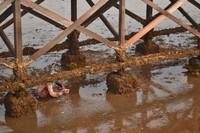 Kaki jembatan menjadi mata pencaharian pencari kerang.jpg