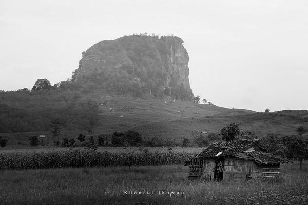 Penampakan Gunung Gajah