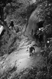 Jalur Pendakian Gunung Gajah