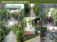Risma Datang, Kampung-kampung di Surabaya Ini Jadi Hijau