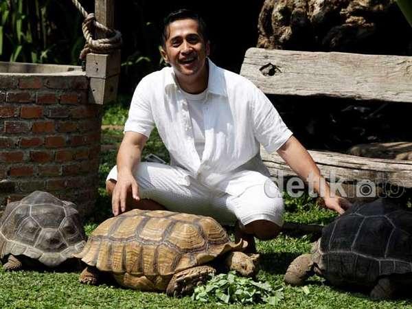 Serunya Irfan Hakim Bermain dengan Kura-kura