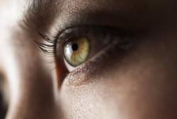 Hati-hati, Cacing Bisa Bersarang di Paru-paru, Mata dan Otak Manusia
