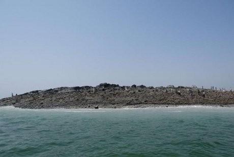 Warga Pakistan Ramai-ramai Datangi Pulau Baru yang Muncul karena Gempa