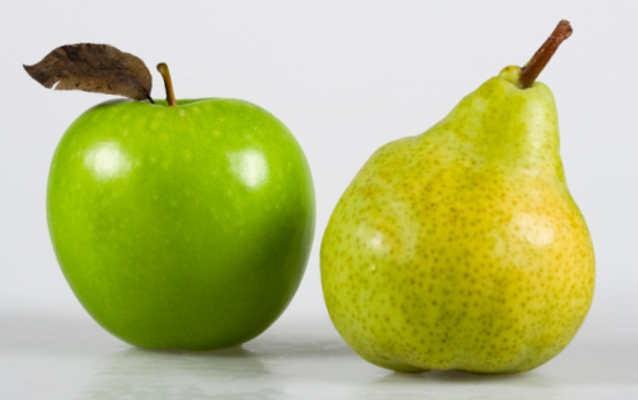 Hasil gambar untuk apel pir