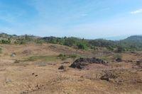 Penampakan desa Bitobe yang terlihat gersang dan kering. (Foto: Merry/detikHealth)