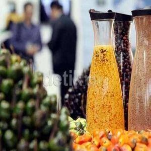 RI Gagal Loloskan Sawit Masuk Daftar Produk Ramah Lingkungan di APEC 2013