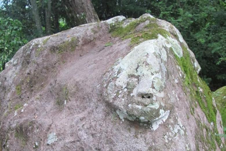 Batu berwajah manusia di situs Pagar Batu (Agnes/detikTravel)
