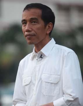 Jokowi Segera Sulap Rawa Babon Jadi Waduk