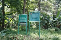 Rawa Danau, Serang
