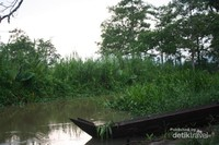 Perahu dayung di pinggiran sungai