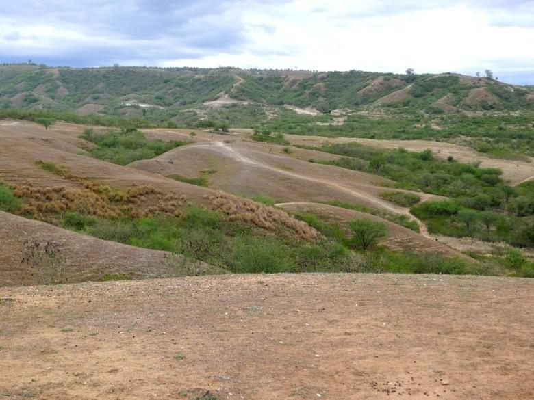 Palu Juga Punya Bukit Jabal Nur