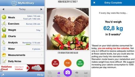 Aplikasi Menghitung Asupan Kalori