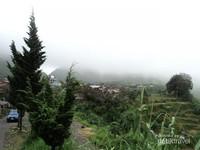 Sampai jumpa lagi, Desa Tertinggi di Pulau Jawa!!!