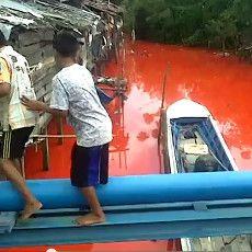 Polisi Duga Kuat Air Sungai Bontang Berubah Merah karena Larutan Pewarna