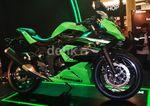 Kawasaki Lahirkan Ninja RR Mono dengan 1 Silinder