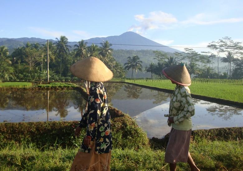 Gunung Slamet Letupkan Lava Pijar, Statusnya Tetap Waspada