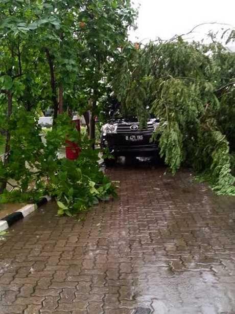 Hujan Deras, Fortuner di Gedung BPK Tertimpa Dahan