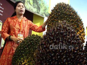 Pameran Industri Kelapa Sawit 2014