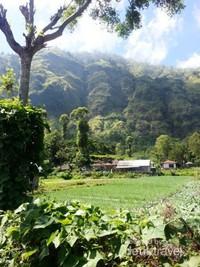 Pemandangan Desa Trunyan yang memanjakan mata