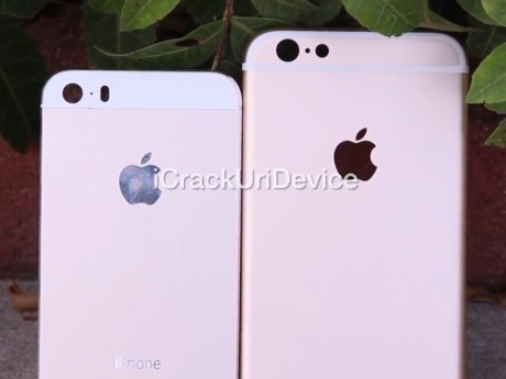 Bocoran iPhone 6 Gold