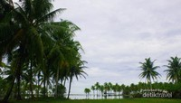 Muaro Putuih, Pemandangan di Belakang Pekarangan Rumah