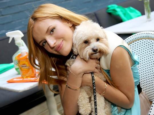 Bella Thorne dan Kingston, Anjing Kesayangannya