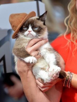 Grumpy Cat (gettyimages)