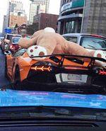 Boneka Teddy Bear Raksasa Tidur di Lamborghini Aventador