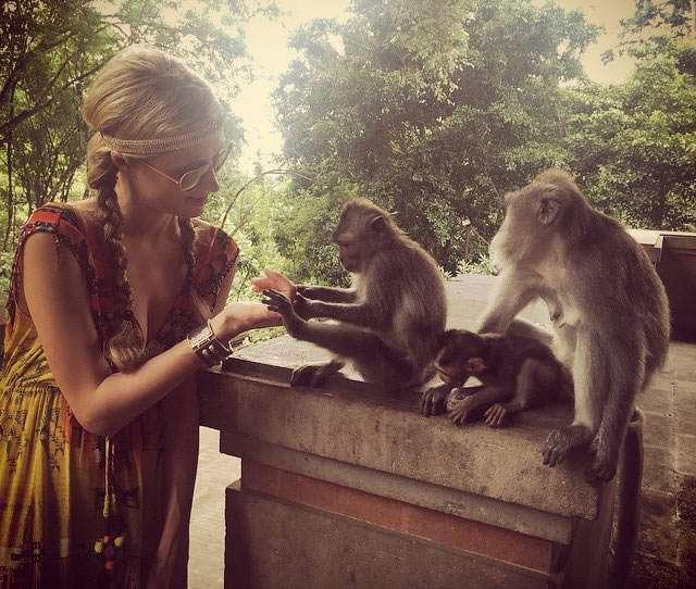 Paris Hilton Asyik Main dengan Monyet di Bali