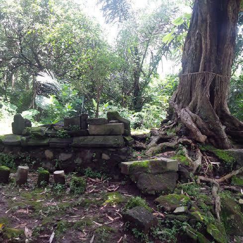 Punden Mojorejo ini Diduga Kuat Lokasi Awal Prasasti Sangguran