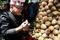 festival buah di banyuwangi diwarnai aksi berebut \u0027tumpeng\u0027 durian