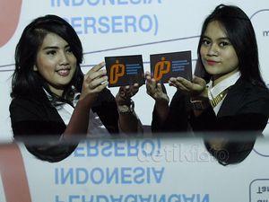 PT PPI Berganti Logo
