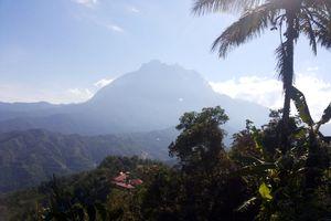 Kinabalu Park, Ritual Mistis & Hijaunya Taman Nasional