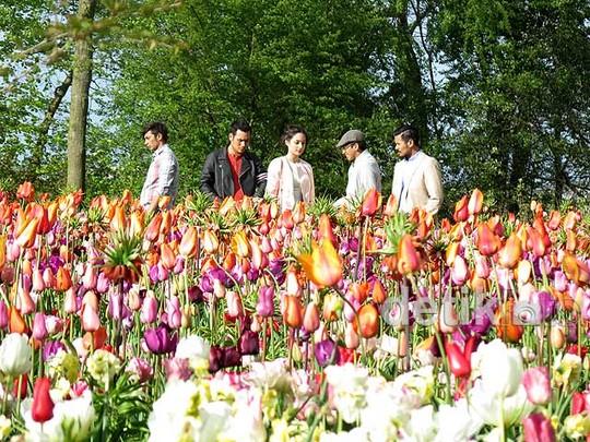 Menikmati Keindahan Bunga Tulip Belanda di Film 'Negeri van Oranje'