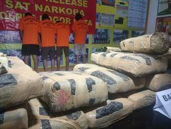 Kubur 20 Kg Ganja di Hutan, Kiwil Cs Ditangkap Polisi Bogor