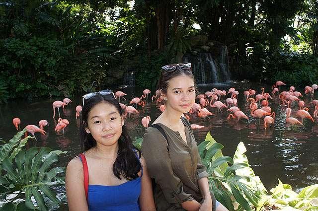 Serunya Yuki Kato Liburan di Singapura Bareng Keluarga