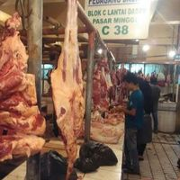 Ini Solusi Pengusaha Agar Lonjakan Harga Daging Sapi Tak Terulang