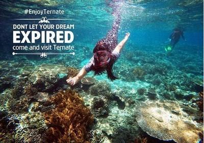 Aneka Spot Snorkeling & Diving Keren di Maluku Utara