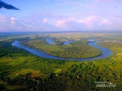 Kalimantan Barat Juga Punya Hutan Ala Amazon di Ketapang