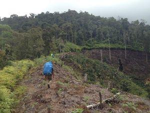Gunung Latimojong Tempat Aviastar Jatuh, Dikenal di Mata Pendaki