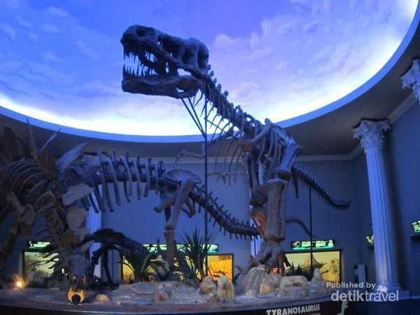 Kerangka Dinosaurus di Museum Satwa Jatim Park 2 (Martha Simandjuntak/d'Traveler)