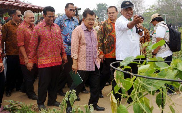 Wapres JK didampingi Mentan Amran Sulaiman dan Gubernur Sumatera Selatan Alex Noerdin meninjau pameran pertanian. Pool/Abiyadun Masykur/detikFoto.