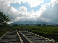Pemandangan Kebun Teh dan Gunung Dempo yang diselimuti kabut