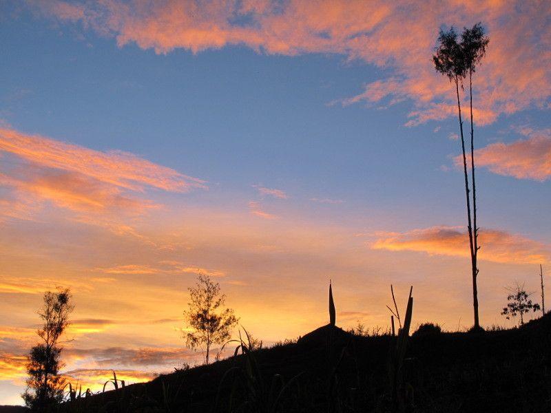Pagi Yang Bernuansa Magis Di Pedalaman Papua