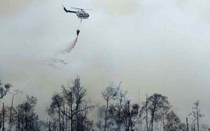 Anak Usaha Sampoerna Agro Digugat Rp 1 T Gara-gara Kebakaran Hutan