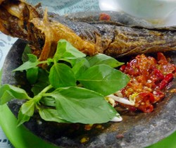 Pecel Lele Berasal dari Jawa Tengah atau Jawa Timur?