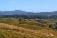 Indahnya bukit ini