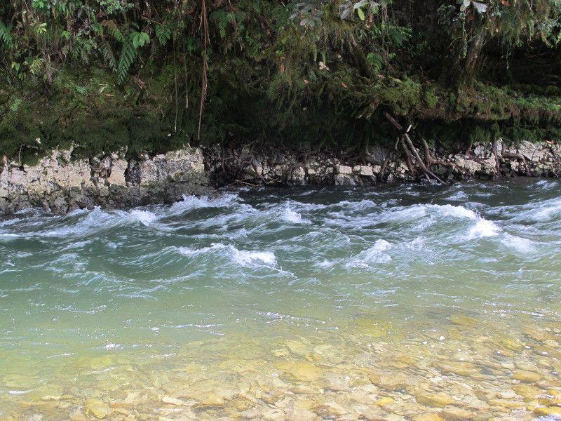 101+ Gambar Air Sungai Jernih