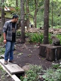 PEngunjung wisata bisa bercengkerama dengan monyet
